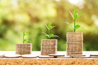 Gehaltsunterschiede (Symbolbild; Foto: pixabay.com / nattanan23)