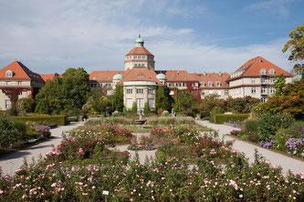 Der Botanische Garten München (Symbolbild; Foto: pixabay.com / stux)