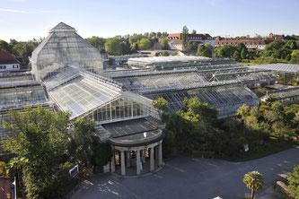 Blick von oben auf die Gewächshausanlage des Botanischen Garten in München (Foto: Franz Höck, Botanischer Garten München-Nymphenburg)