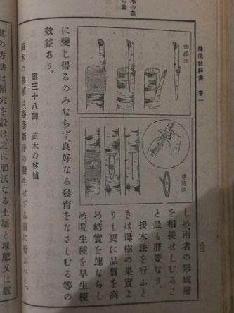北海道農業教科書(北海道博物館展示資料より)