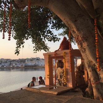 Pushkar Pilgerstadt Rajasthan Indien