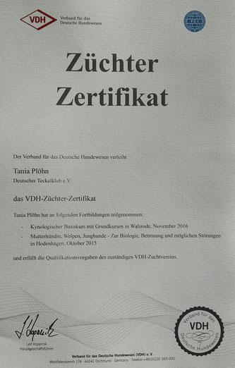 Zwillingsschwestern (04/18) - Zwerg-Rauhaardackel \
