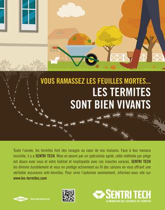 Sentri Tech, Campagne de sensibilisation sur le travail des termites durant une année