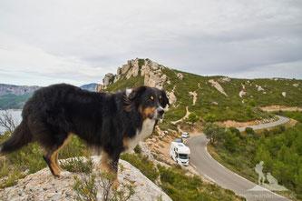 Mit Hund und Wohnmobil nach Südfrankreich: Wie es doch geklappt hat ...