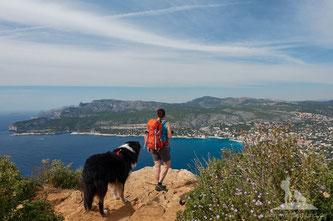 Wandern mit Hund Cassis - route des cretes