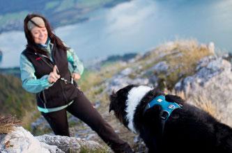 Bietet Sicherheit am Berg und macht Spaß: Hund-Erziehung.