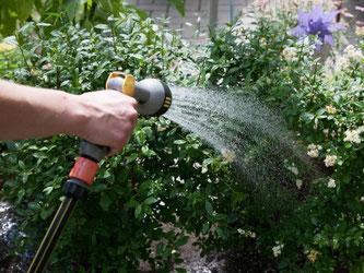 Der Nachbar gießt den Garten während der Besitz nicht da ist. Das ist nett. Wird dabei etwas beschädigt, haftet der Nachbar nur bei grober Fahrlässigkeit. Foto: Kai Remmers