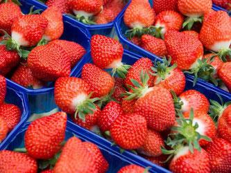 Erdbeer-Erzeuger werfen Einzelhandel Preisdumping vor. Foto: J. Lübke/Archiv
