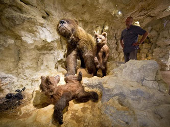 Nachbau einer Bärenhöhle in der Dauerausstellung «Eiszeit». Foto: Daniel Naupold