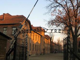 «Arbeit macht frei» steht über dem Eingang zum Lager - eine zynische Parole: In Auschwitz wurden mehr als 1,1 Millionen Menschen ermordet. Foto: Eva Krafczyk