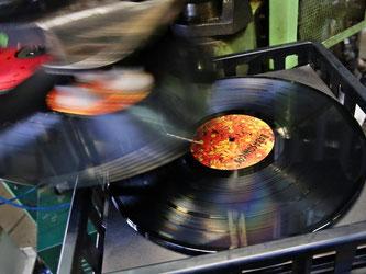 Schallplattenfreunde sind auch unter jungen Leuten zu finden. Foto: Jan Woitas