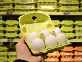 Wer Eier einkauft, sucht derzeit vergeblich nach der Kennzeichnung für Freilandhaltung. Wegen der Vogelgrippe müssen Hühner im Stall bleiben. Foto: Julian Stratenschulte