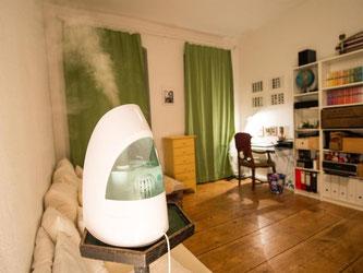 Luftbefeuchter funktionieren wie Wasserkocher. Sie erhitzen das Wasser, das dann im Raum verdampft. Foto: Inga Kjer