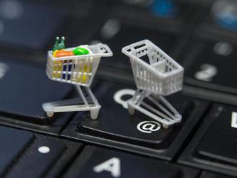 Immer wieder gelangen Online-Einkäufer in die Fänge von Fakeshops. Am Ende ist dann bezahlt, aber der Einkaufswagen leer. Foto: Jens Büttner