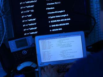 Digitale Erpressung und Computersabotage nehmen einer Studie zufolge zu. Foto: Oliver Berg