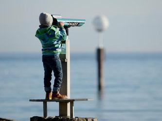Der Klimawandel hat Auswirkungen auf den Bodensee. Foto: Felix Kästle/Archiv