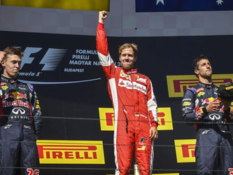 Sebastian Vettel hat den Großen Preis von Ungarn gewonnen. Foto: Janos Marjai