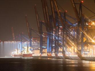 Containerschiffe liegen im Hamburger Hafen: Die Stimmung in der deutschen Wirtschaft hat sich im Januar deutlich eingetrübt. Foto: Daniel Bockwoldt/Archiv