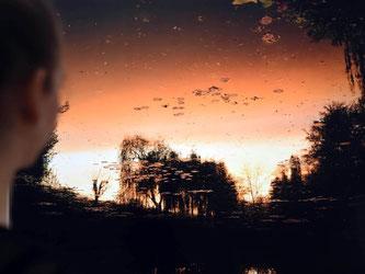 Im Garten von Monet: «Giverny VII» (2010) von Elger Esser. Foto: Uli Deck