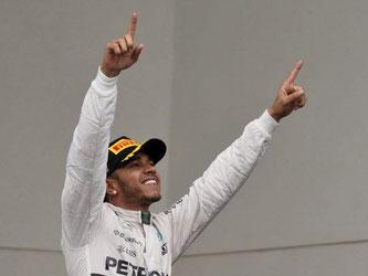 Lewis Hamilton konnte in Austin die Verteidigung seines Weltmeistertitels feiern. Foto: Larry W. Smith
