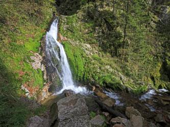 Die Baden-Württemberger bewerten den Nationalpark vor allem positiv. Foto: R. Wittek/Archiv