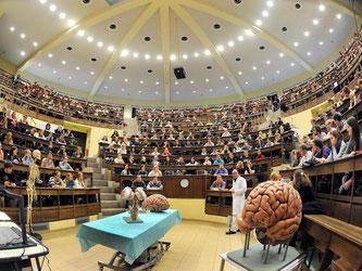 Bis zur Anatomie-Vorlesung im Medizinstudium ist es für alle, die kein Einser-Abi haben, ein langer Weg. Die Wartezeit liegt derzeit bei zwölf Semestern. Doch es gibt Möglichkeiten, trotzdem ans Ziel zu kommen. Foto: Waltraud Grubitzsch