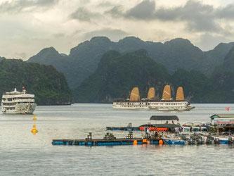 Eine Bootsfahrt durch die mystische Halong-Bucht gehört für viele Vietnam-Reisende zum Standardprogramm. Das Land ist für Touristen ziemlich sicher. Foto: Philipp Laage