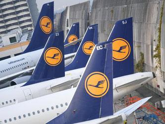 Lufthansa-Maschinen am Flughafen von Frankfurt am Main. Im Tarifstreit sind sich die Vereinigung Cockpit und Lufthansa bislang keinen Schritt näher gekommen. Foto: Arne Dedert