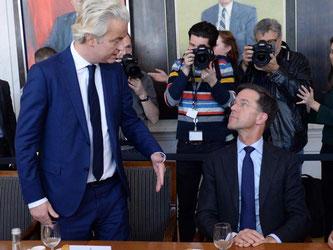 Der rechtsliberale Wahlsieger Mark Rutte (r) und der Rechtspopulist Geert Wilders bei ersten Sondierungsgesprächen nach der Parlamentswahl im Binnenhof, dem niederländischen Parlament, in Den Haag. Foto: Daniel Reinhardt