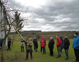 Gelegentliche steife Böen aus Südwest störten kaum bei der Pflege junger und alter Bäume. Foto: E. Heybach