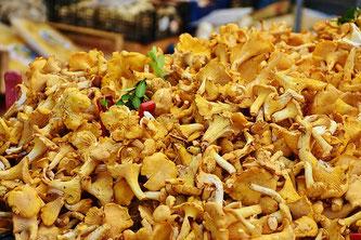 Eierschwammerl Pfifferlinge am Markt