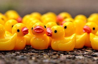 Quietsch Ente Entchen