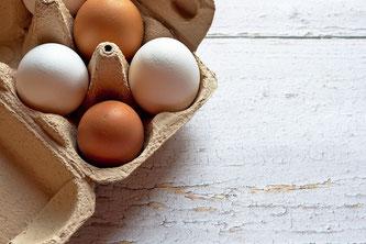 Eier braun und weiß im Höcker