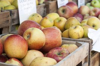 Äpfel Steigen
