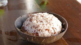 Reis Schale