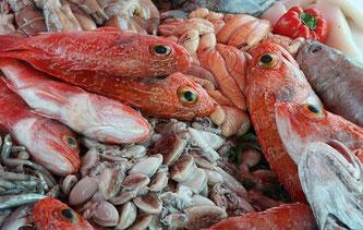 Fische Meeresfrüchte Markt frisch
