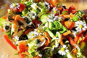 Wildkräuter Salat essen