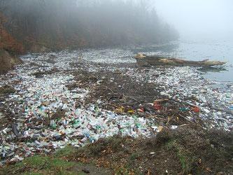 Plastikmüll Meer