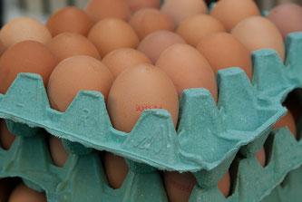 Eier auf grünem Höcker