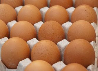 Eier in Eierhöcker