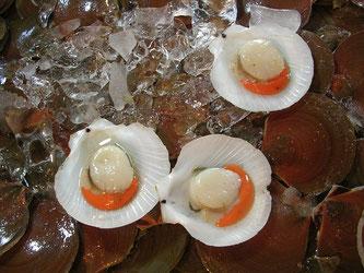 Jakobsmuscheln Karotte Eis Fisch