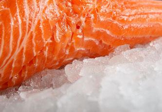 Lachs auf Eis