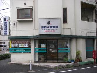 瀬田犬猫病院 外観