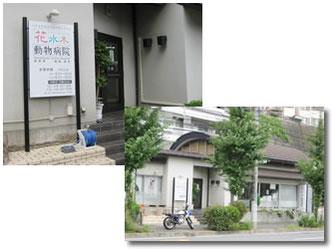 横浜市 花水木動物病院