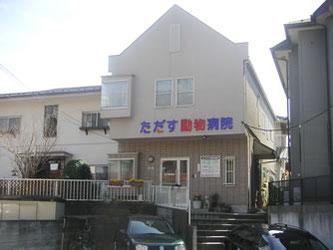横浜市 ただす動物病院
