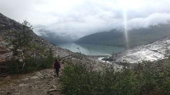 Bild: Weg zum Austerdalsisen