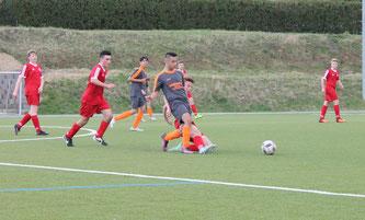 Mit 1:4 unterlagen die B1-Junioren beim Grafschafter SV.