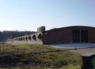 Hähnchenmaststall im Emsland (Foto: NABU)
