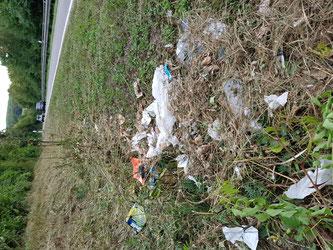 Wer hilft den Müll zu entfernen?