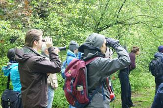 Vogelbeobachtung bei der NABU-Exkursion im Palmengarten. Foto: René Sievert